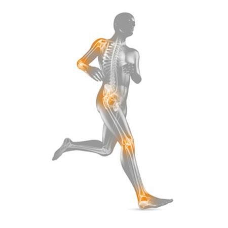 Gelenkchirurgie - Knie, Schulter, Ellbogen, Sprunggelenk
